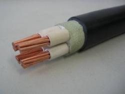 额定电压750v及以下氯璜化聚乙烯绝缘机车车辆用电缆(线)
